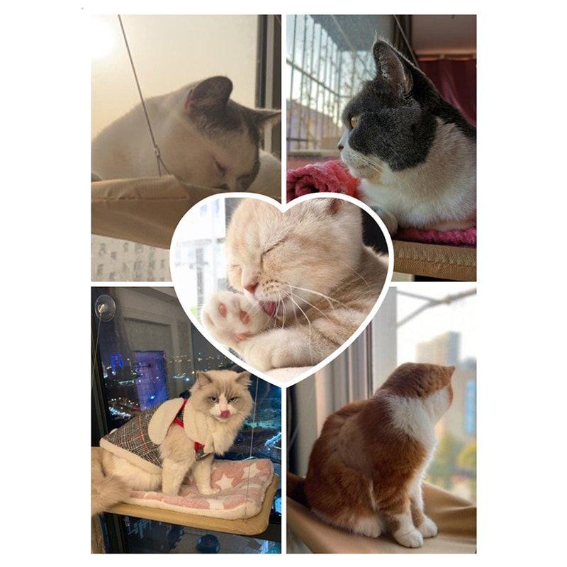 Cat Sunny Seat Window Mount Pet Cat Hammock Comfortable Cat Pet Bed Mat Cute Pet Hanging Beds Set Bearing 20kg